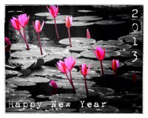 Happy New Year - Bonne année 2013