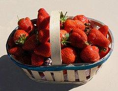 Mangeons des fraises, mais du pays!