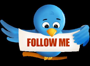Comment prendre son envol avec Twitter