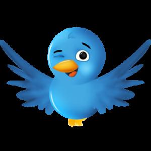 Twitter, trois points à respecter