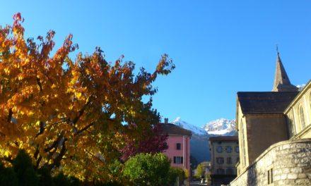 Petits plaisirs d'automne