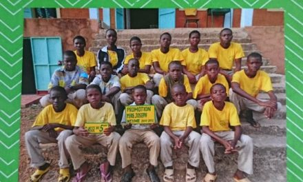 Travail de matu: Un joli projet au Bénin