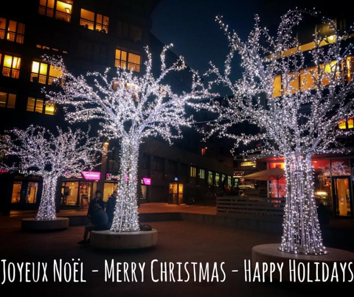 Joyeux Noël, Merry Christmas!