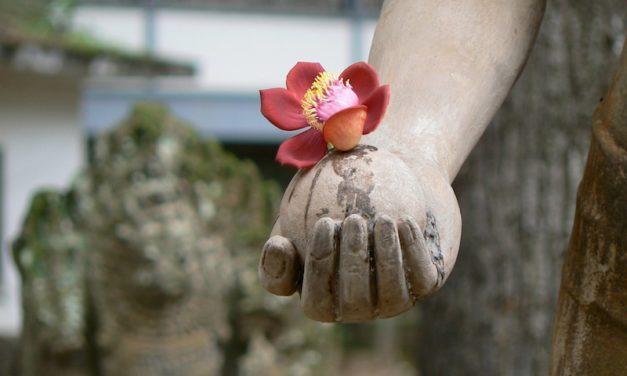 Mindfulness: pleine conscience ou fausse conscience?
