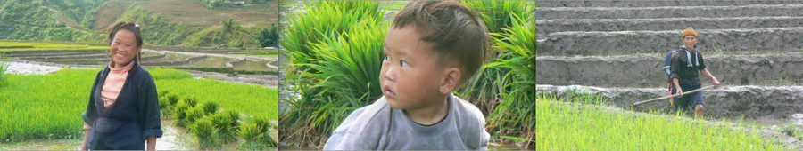 riziere-sapa-famille