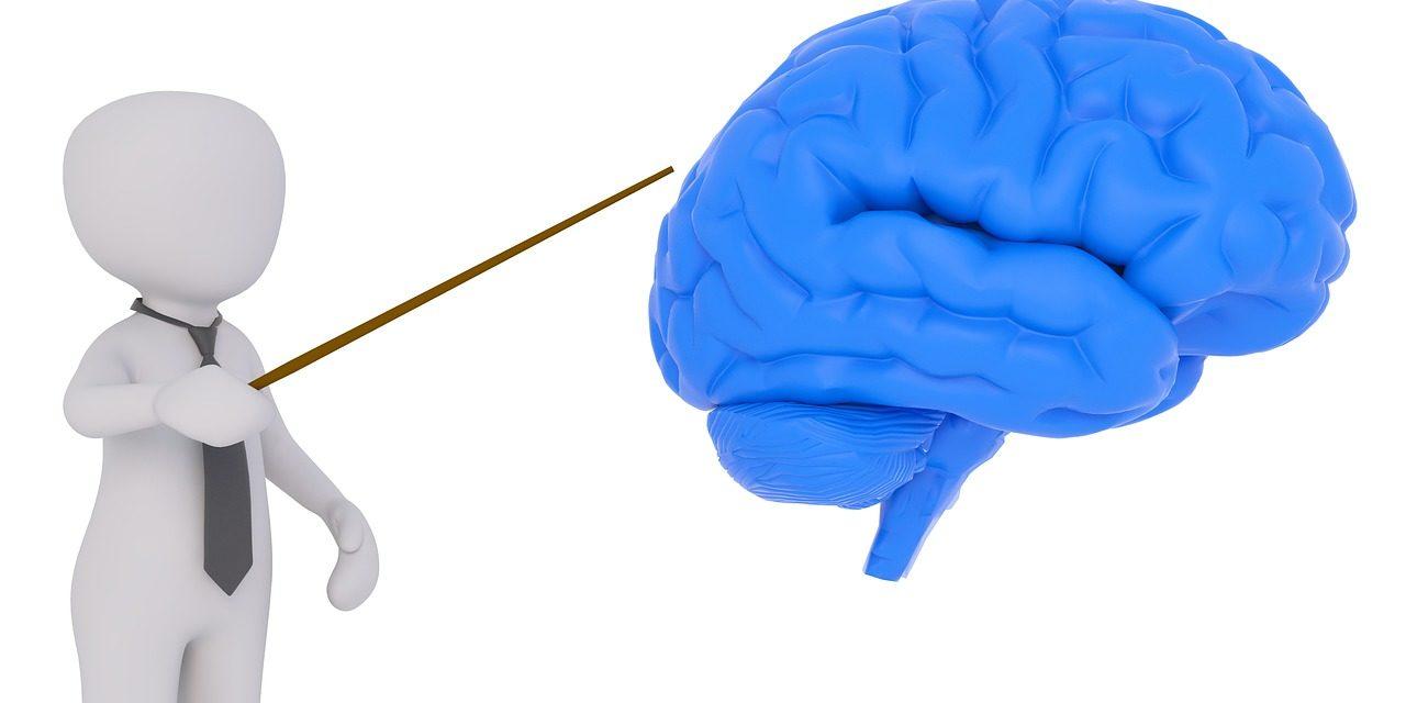 La semaine du cerveau 2018 à Genève et Lausanne
